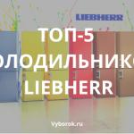 10 лучших холодильников Liebherr