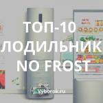 10 лучших холодильников No Frost